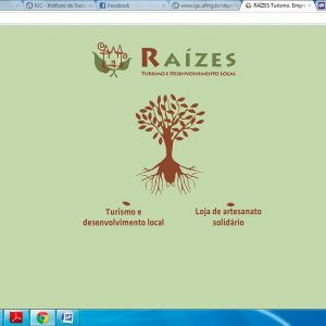 2009.9 Novo site