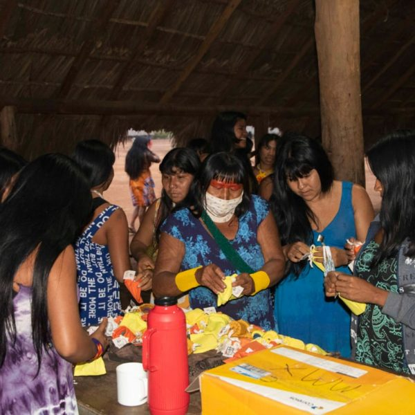2020.7 DMF Xingu
